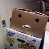 Boxface
